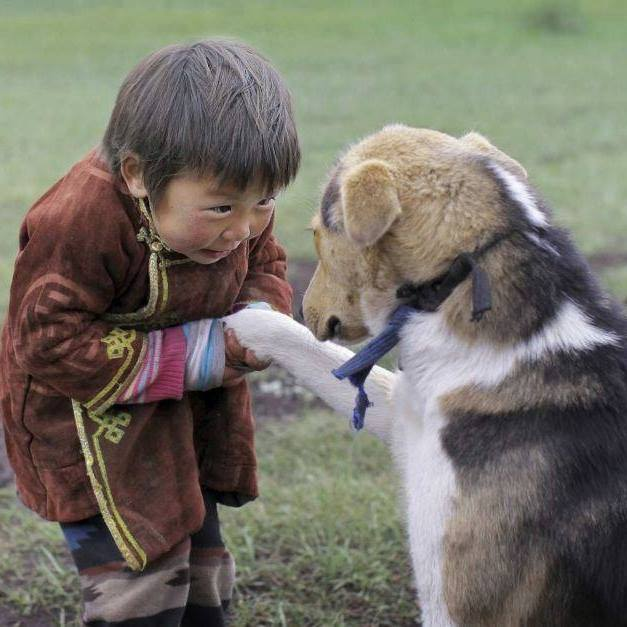 Inspire boy shaking hands with dog